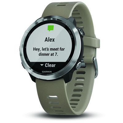 Garmin Forerunner 645 Watch