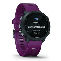 Garmin Forerunner 245 Watch -  berry