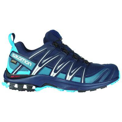 Salomon Men's XA Pro 3D GTX Trail Running Shoe